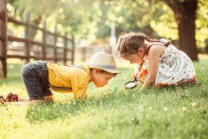 Love or hate science - curiosity - the tutor team
